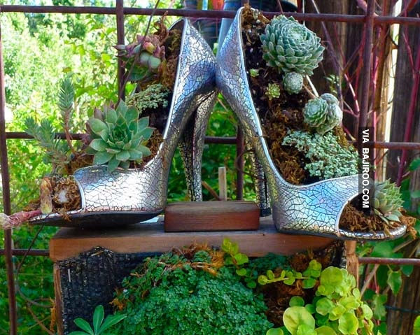 used-heels-as-flower-pots