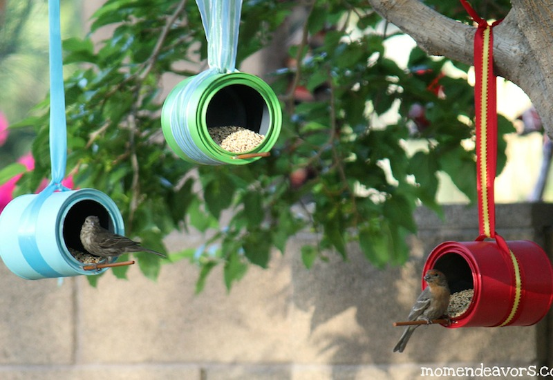 Birds-on-DIY-Bird-Feeders1