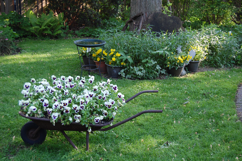 gardeninacity wheelbarrow 01