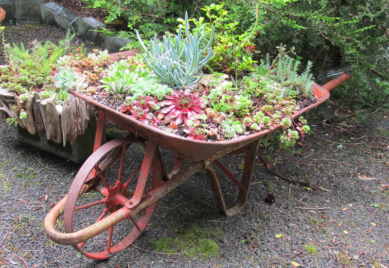 maysdream wheelbarrow 01