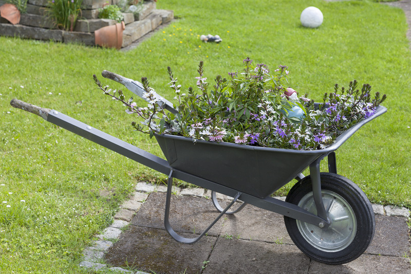 wheelbarrow planter 03