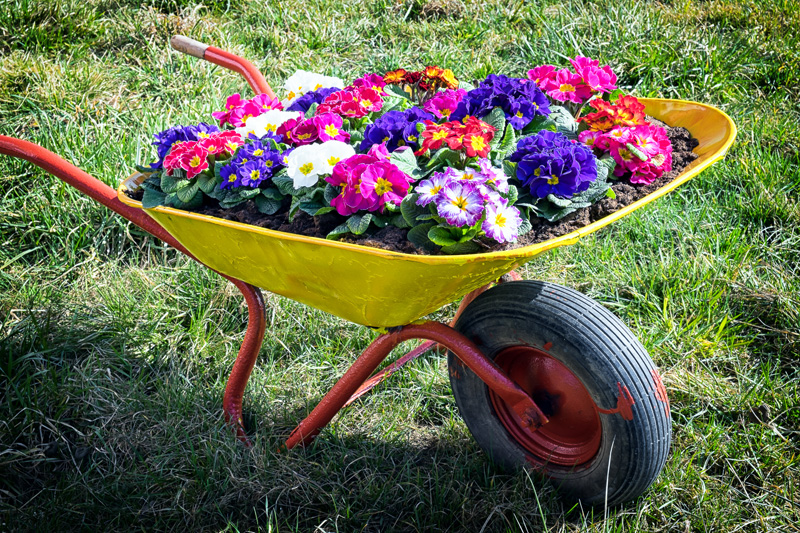 wheelbarrow planter 13