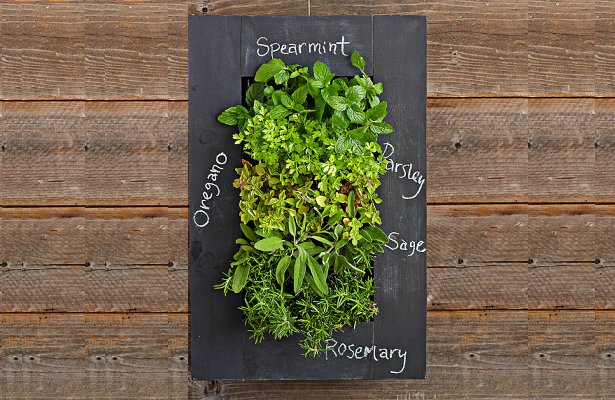 17 Vertical Garden Ideas That Will Blow Your Mind Garden