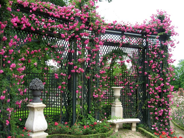 Pleasing 25 Charming Garden Trellises And Arbors Garden Lovers Club Squirreltailoven Fun Painted Chair Ideas Images Squirreltailovenorg