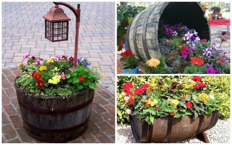 Wildly Whimsical Barrel Planter Ideas Garden Lovers Club