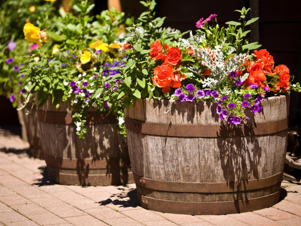 iStock-3777830_barrels-in-garden-with-flowers_s4x3.jpg.rend.hgtvcom.1280.960