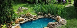 15 Breathtaking Backyard Pond Ideas