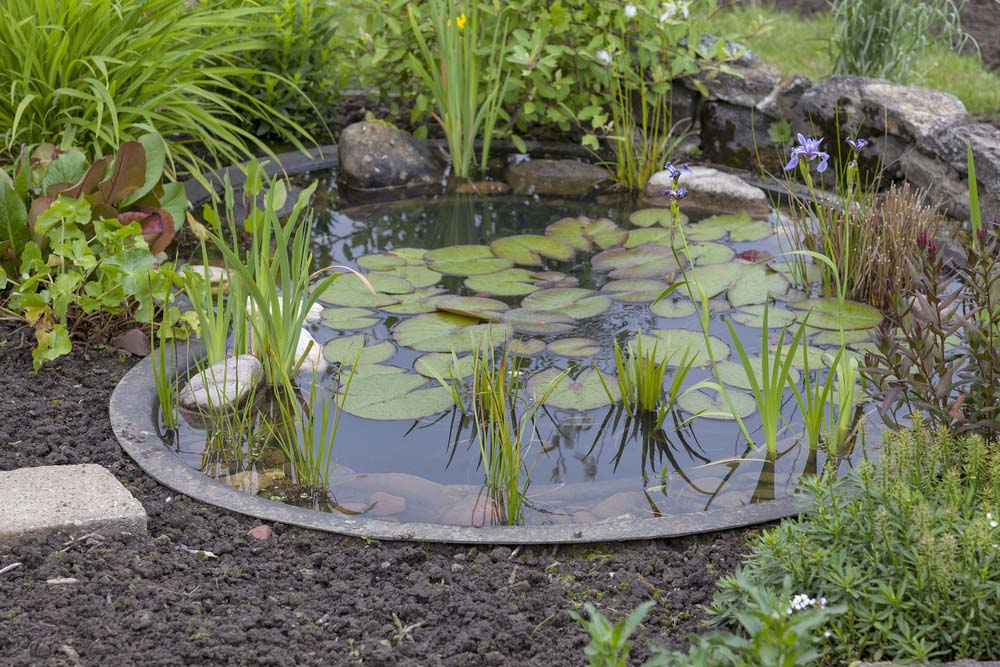 15 Breathtaking Backyard Pond Ideas - Garden Lovers Club