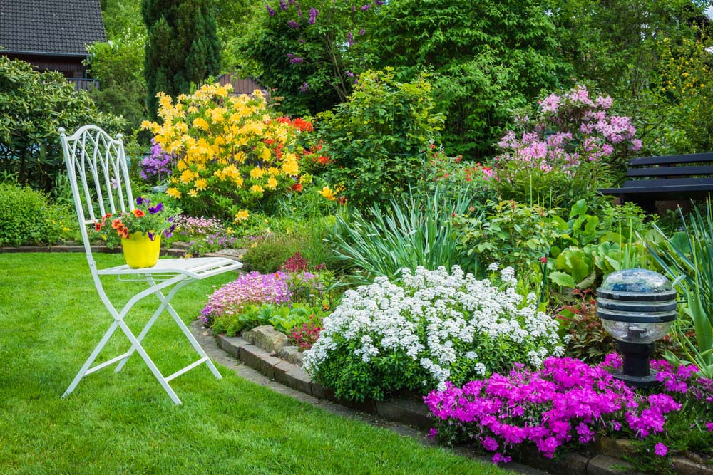 Charming Thick, Colorful Garden