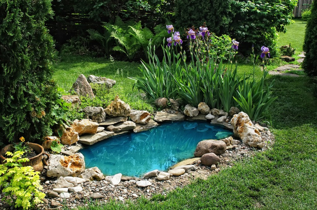 15 breathtaking backyard pond ideas garden lovers club