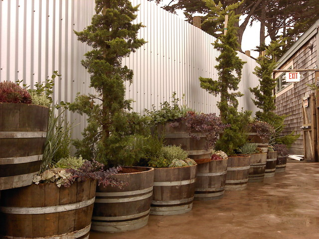 wine-barrel-planters