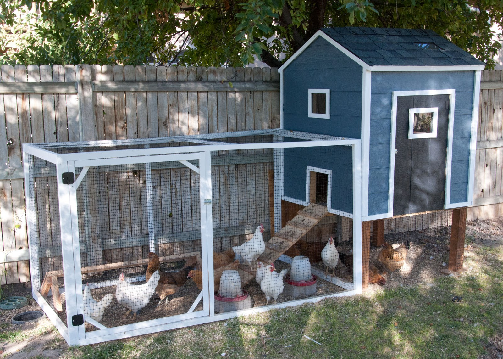 10 Fresh And Fun Chicken Coop Design Ideas - Garden Lovers Club