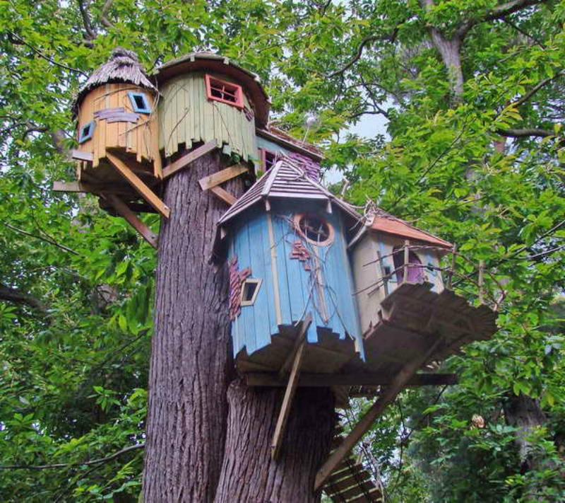 Cool-Tree-House-With-Color-Options