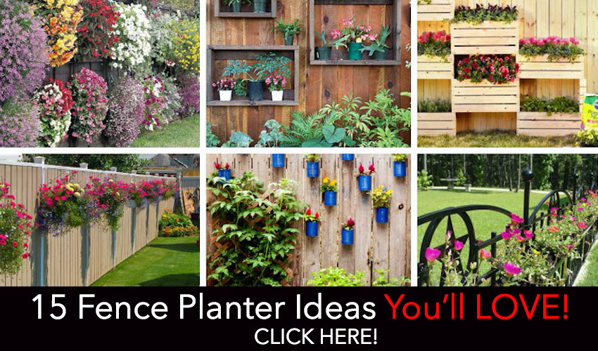 FencePlanters FeaturedPost