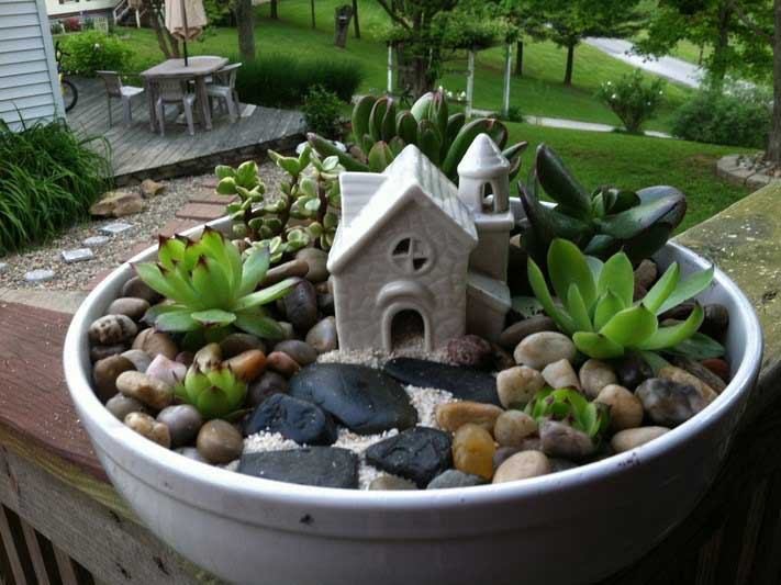 succulent fairy garden idea