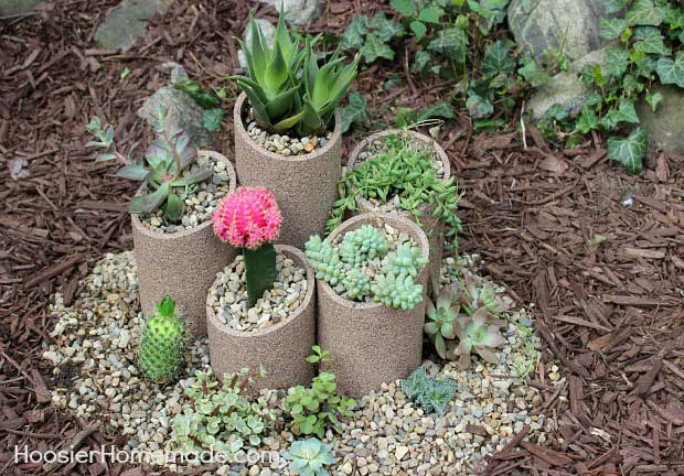 25 Indoor And Outdoor Succulent Gardens Of All Sizes Garden