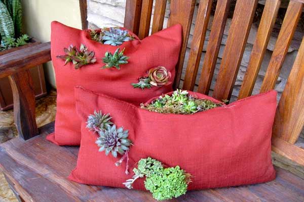 succulent pillow ideas