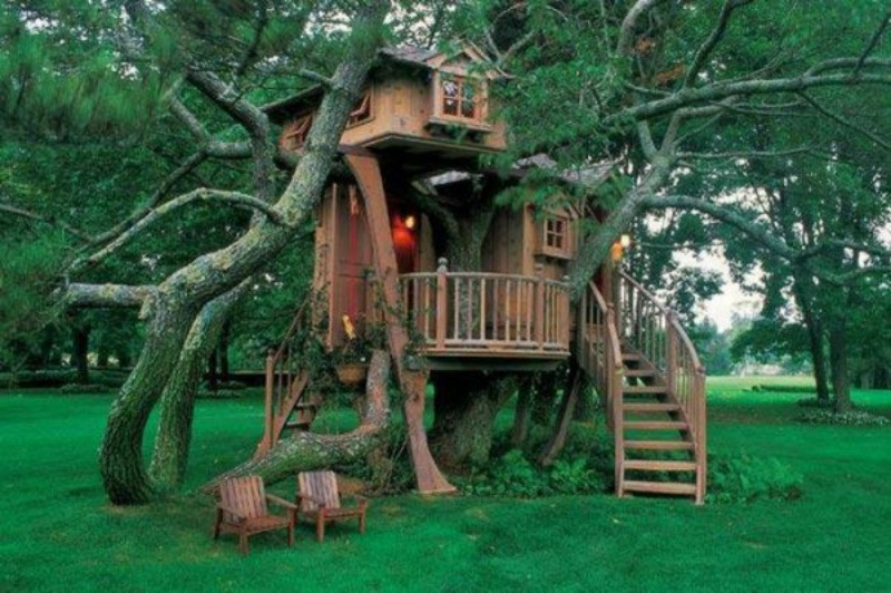 Unusual-But-Interesting-Tree-Houses-8-e1344292006332