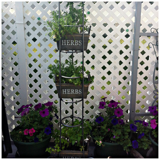 cd-tower-herb-garden