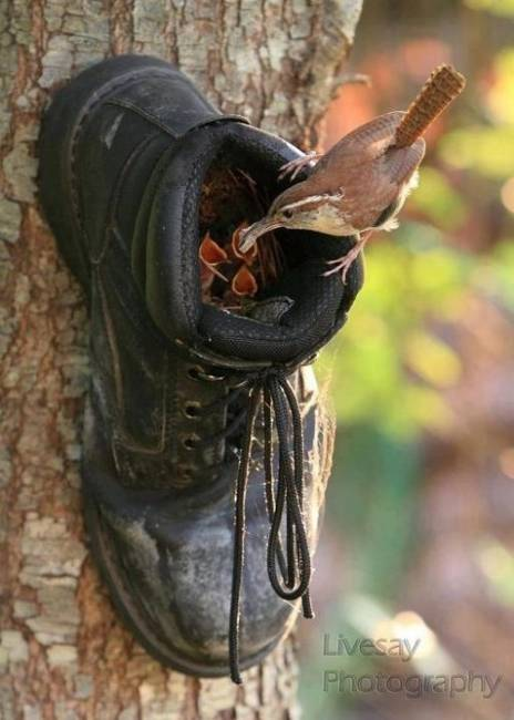 recycled-crafts-ideas-handmade-birdhouses-1