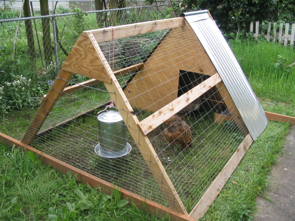 simple-chicken-coop-designs1