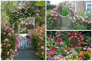 10 Floral Garden Gates In Bold Color