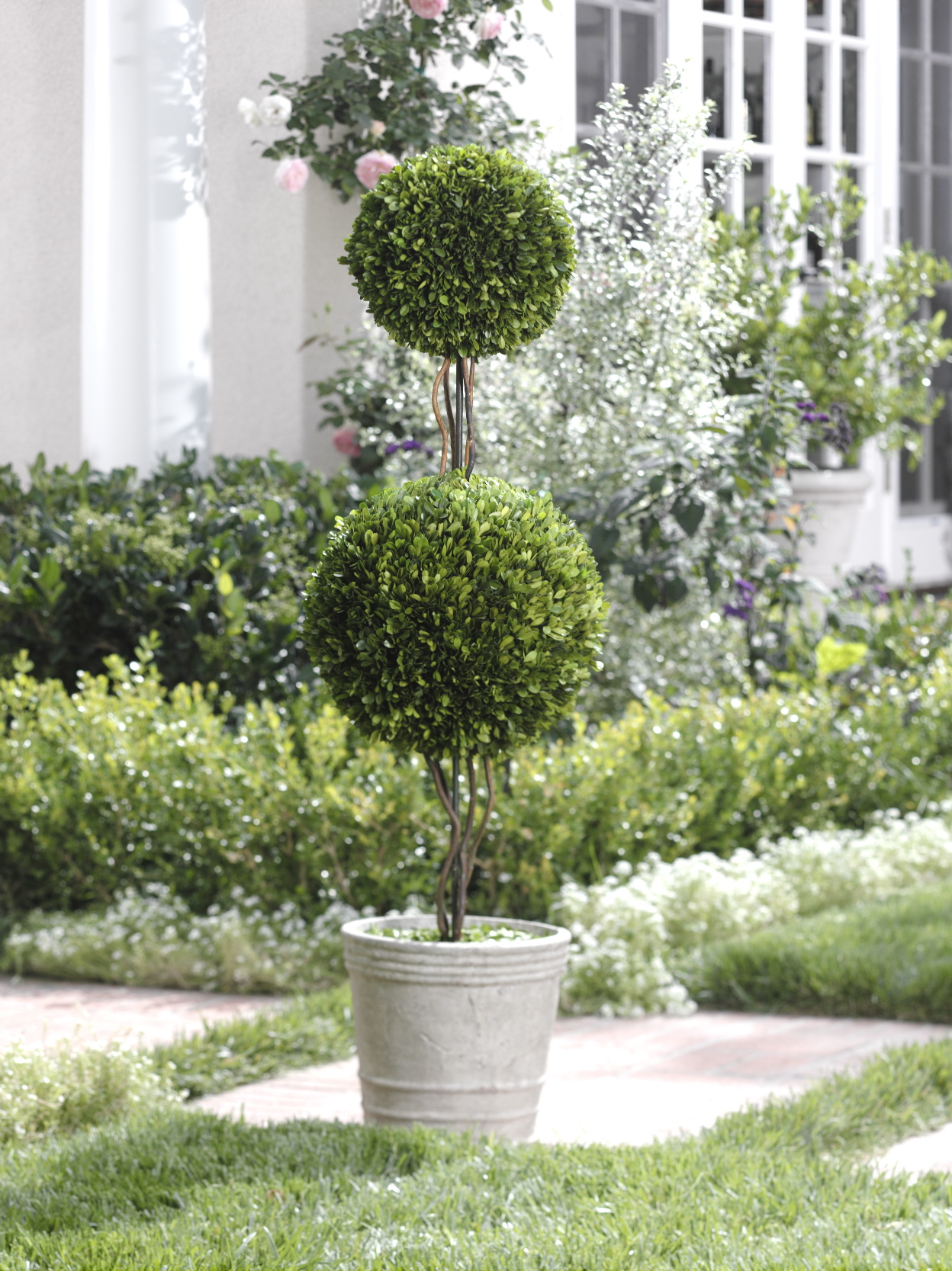 13 Topiary Planter Ideas That Will Have You Priming Your Shears Garden Lovers Club