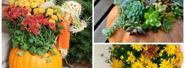 11 DIY Pumpkin Flower Planters Perfect For Fall