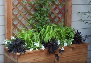 How to Build a Trellis With a Large Planter (Video)