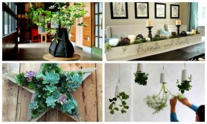 11 Innovative & Fun Indoor Planter Ideas