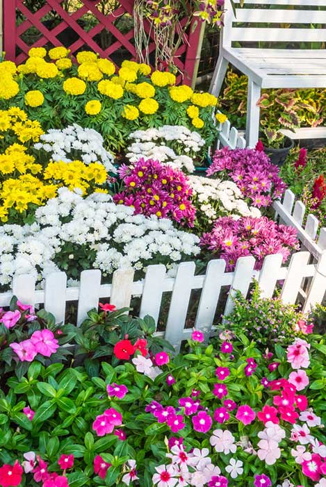 This sublime little pocket sized garden is full to the brim with a variety of petal types and colors, framed perfectly by a miniature white picket fence. We love intricate touches like this, reminding us that small scale detail is just as important as the big picture.