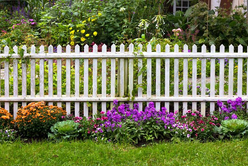 We love the way a subtle variety of colorful bulbs can complement and complete an ornate garden fence. The white pickets here are framed by the glow of greenery, purple, and orange flowers in a way that no manmade decoration can match.
