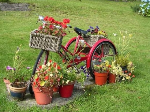 Using a full sized adult tricycle, you'll be able to have plenty of frame space to hang large baskets, like these rectangular wicker examples. Parked in an open space in your garden or yard, the frame can add a bright piece of contrast to the landscape, especially if you give it a fresh coat of paint. Hang any basket you like on the tricycle, and you'll already have a fantastic, attention-grabbing container garden.