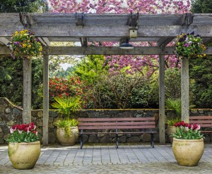 11 Gorgeous Garden Pergolas For Inspiration