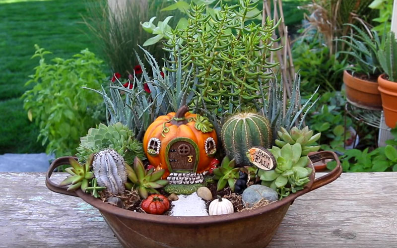 Learn How To Make This Fall Fairy Garden Container Garden Lovers