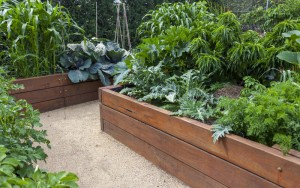 DIY Instructions: Learn How To Build A Raised Garden Bed