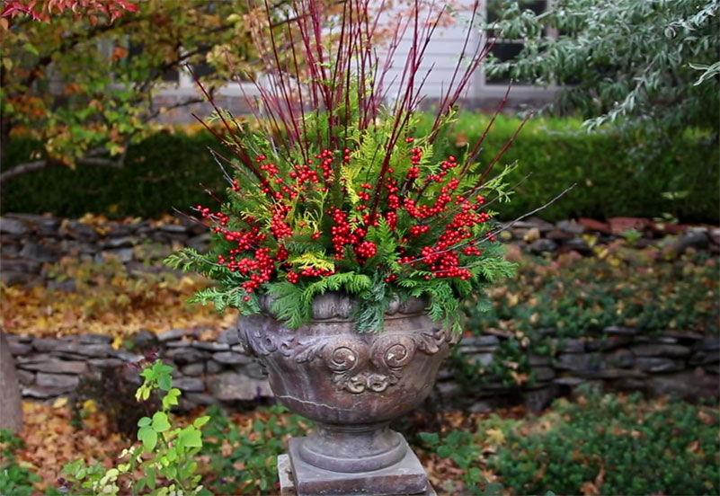 Winter-Container-display