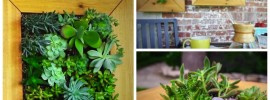 Learn How to Make this Gorgeous Vertical Succulent Garden