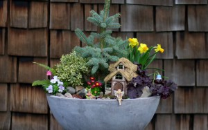 Learn How to Make this Spring Fairy Garden