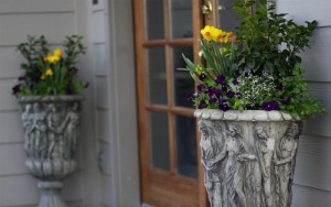 spring-containers