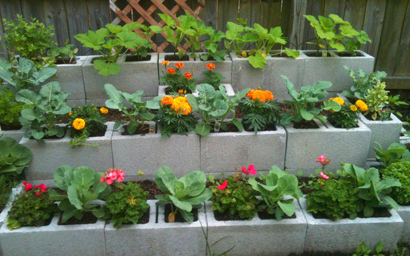 15 Creative Cinder Block Raised Garden Beds - Garden rs Club on raised water garden, raised long garden, raised deck garden, raised kitchen garden, raised brick garden, raised patio garden, vertical herb garden, raised home garden,