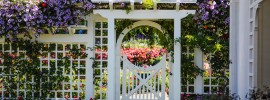 20 Gardens Exploding With Color