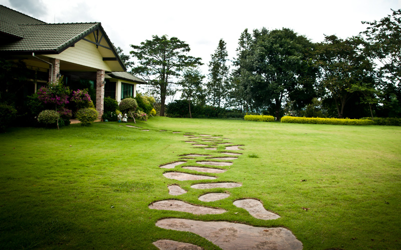 garden-path-stepping-stones-14