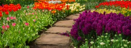 15 Garden Path Ideas With Stepping Stones