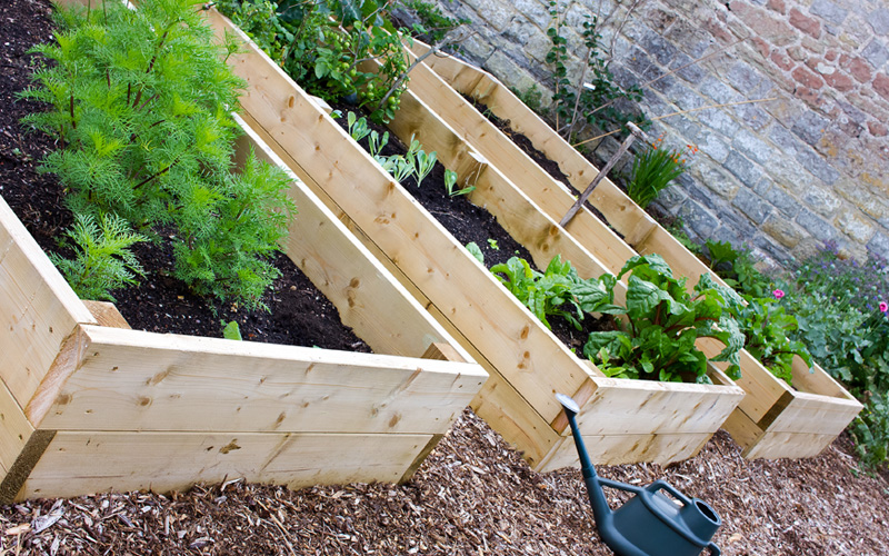 raised-wooden-plant-beds-02