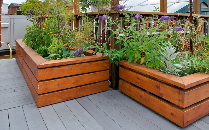 raised-wooden-plant-beds-03
