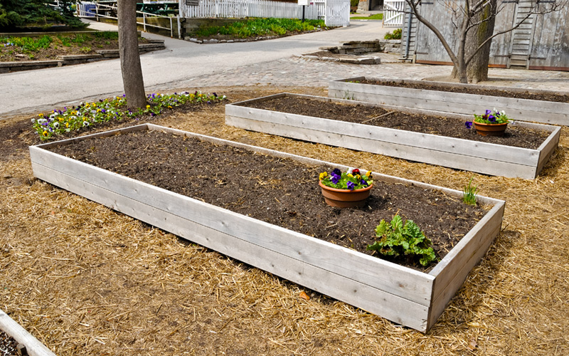 raised-wooden-plant-beds-07