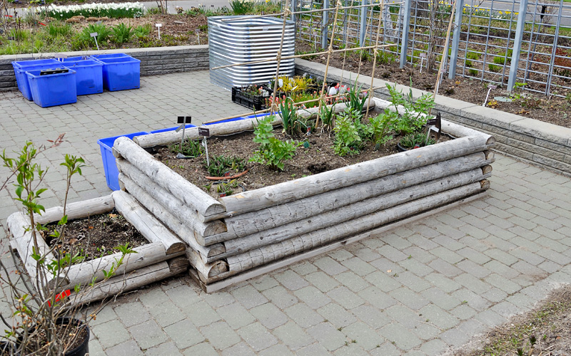 raised-wooden-plant-beds-08