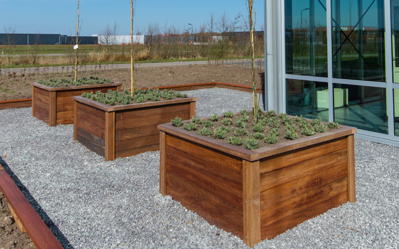raised-wooden-plant-beds-09