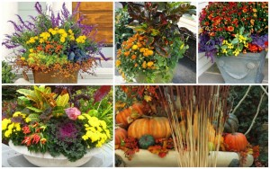 20 Fabulous Fall Container Garden Ideas